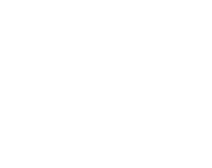 MG-Project